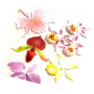 """Custom & Decorative {1"""" to 2"""" Inch} 8 Piece Pack of Mid-Size Stickers for Arts, Crafts & Scrapbooking w/ Multiples of Cute New Simple Beautiful Orchid Flowers Delicate Style {Multicolored}"""