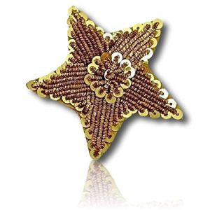 "Beautiful & Custom {1.5"" Inch} 1 of [Sew-On & Glue-On] Embroidered Applique Patch Made of Sequins w/Single Shining Rare Bullion Star w/Circle Chain Outer Border & Center Round Hoop Sty {Gold, Black}"