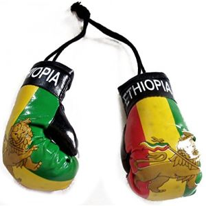 """Cool & Custom {4"""" x 2"""" each w/ String Hang} Single Unit of Rear View Mirror Hanging Ornament Decoration Made of Synthetic Leather w/ Boxing Gloves Lion of Judah Design [GMC Green Yellow Red Colored]"""