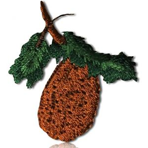 "Unique & Custom {1.25"" x 1.25"" Inch} 1 of [Glue-On, Iron-On & Sew-On] Embroidered Applique Patch Made of Natural Cotton w/Natural Foliage Pine Forest Branch Seed Pinecone {Brown, Green} + Certificate"