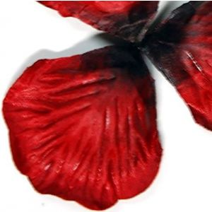 """Custom & Fancy {Approx 1.8"""" x 2.3"""" Inch} 1000 Pieces of Large """"Table"""" Party Confetti Made of Silk w/ Ombre Burgundy Color Romantic Fake Rose Petal Valentine Love Bridal Scatter Design [Red & Black]"""