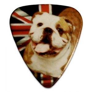 Unique and Custom (.76 MM Thick) Medium Gauge Hard Plastic, Traditional Style Semi Tip Guitar Pick w/British Bulldog Dog Union Jack UK Design {Blue, White, Tan & Red - 5 Picks Multipack}